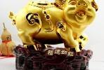元吉说风水:2018戊戌年生肖运程之肖猪