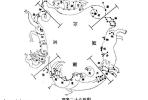零基础学家居风水:第四天,青龙、白虎(上)